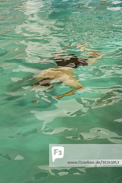 Hochwinkelansicht des Mannes im Schwimmbad