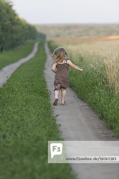 Durchgehende Rückansicht des kleinen Mädchens auf dem Naturlehrpfad
