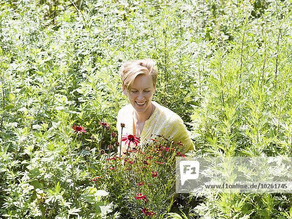 stehend junge Frau junge Frauen Blume Bett Pflanze umgeben Treibhaus