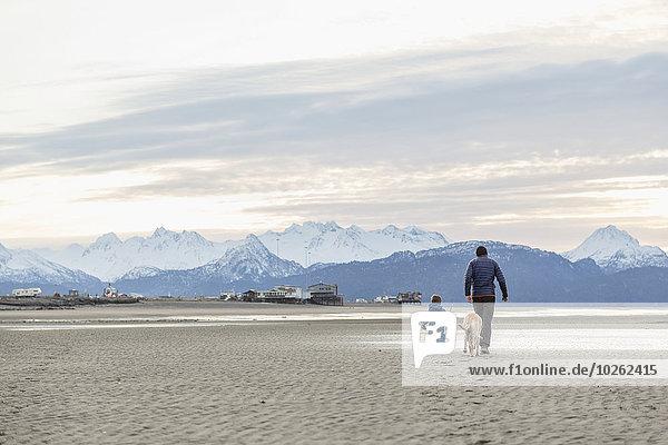 Strand Menschlicher Vater Sohn Spiel Kenai-Fjords-Nationalpark Kenai-Halbinsel