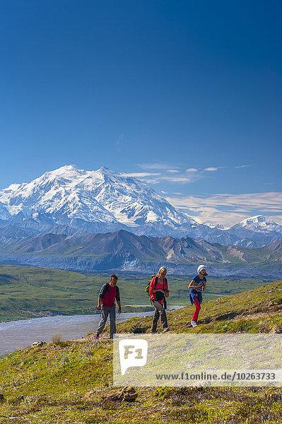 hoch oben nahe Nationalpark folgen Hintergrund wandern 3 Denali Nationalpark Mount McKinley Besucherzentrum