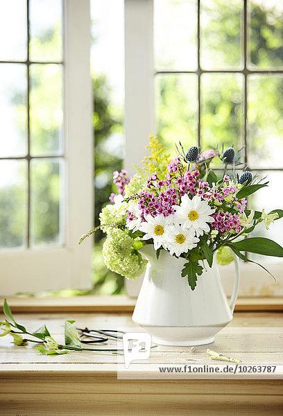 Gänseblümchen Bellis perennis Blumenstrauß Strauß Frische Fenster Blume schneiden weiß Blumenvase Kanne Fensterbank Behälter Hortensie