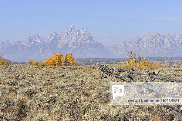 Buck and rail fence with Teton Mountain Range in background  Jackson  Grand Teton  Grand Teton National Park  Wyoming  USA