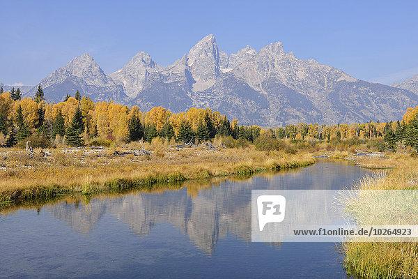 Vereinigte Staaten von Amerika USA Berg Hintergrund Herbst landen Wyoming