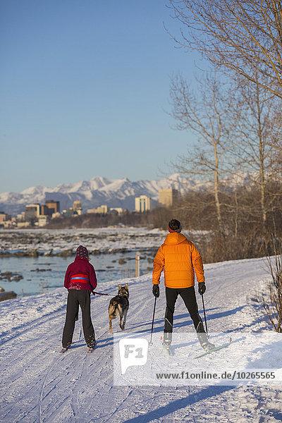 nahe Skyline Skylines überqueren Mensch Menschen folgen Küste Hintergrund Ski Husky Skilanglauf Kreuz Erdbeben
