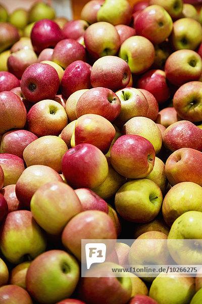Haufen grün rot Apfel