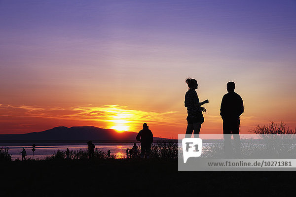Silhouette of people enjoying the sunset over Mt. Susitna and Cook Inlet at Point Woronzof  Anchorage  Southcentral Alaska  Summer