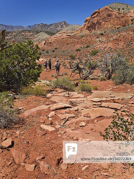 Abenteuer Forschung Wüste Verbindung Loch Schlucht
