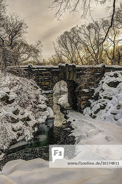 'Snow-covered Glen Span Arch  Central Park; New York City  New York  United States of America'