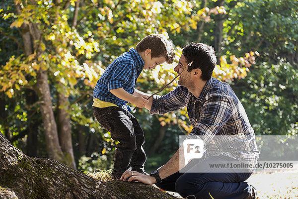 Menschlicher Vater Sohn Baum Eiche groß großes großer große großen spielen Regenwald