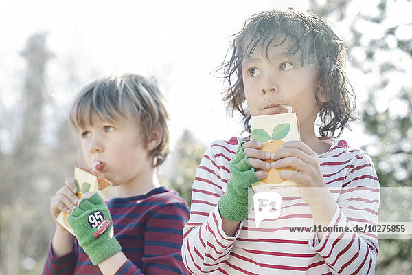 Jungen trinken an sonnigen Tagen aus Saftkisten im Hof Jungen trinken an sonnigen Tagen aus Saftkisten im Hof