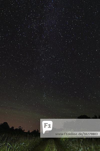 Blick auf Sternenhimmel von der unbefestigten Straße in der Nacht Blick auf Sternenhimmel von der unbefestigten Straße in der Nacht
