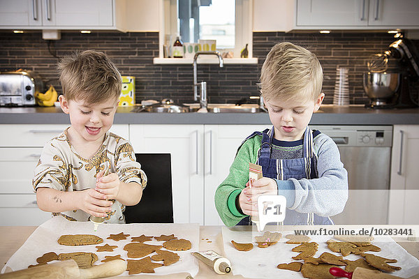 Junge - Person Lebkuchen schmücken Keks