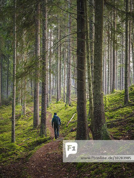 Mann Wald