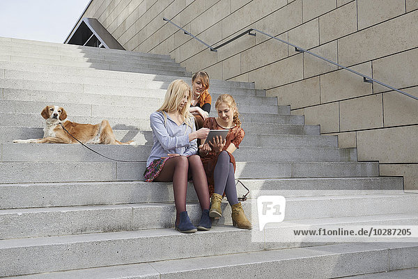 Three friends sitting on a staircase with dog and using a digital tablet  Munich  Bavaria  Germany