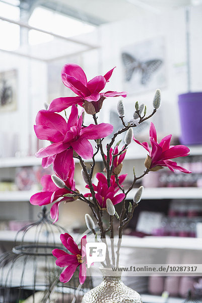 Artificial flower for sale in garden centre  Augsburg  Bavaria  Germany