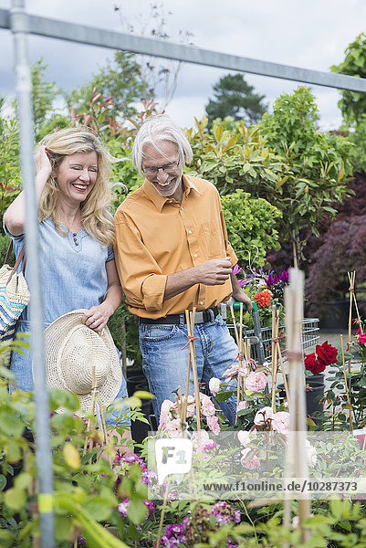 Mature couple choosing plants in a plant nursery  Augsburg  Bavaria  Germany
