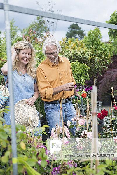 Mature couple choosing plants in a plant nursery  Augsburg  Bavaria  Germany