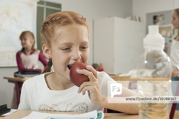 Close-up of a schoolgirl eating an apple in classroom  Munich  Bavaria  Germany