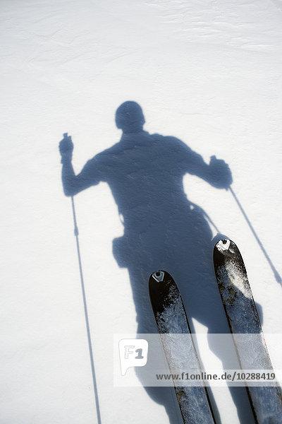 Schweden,  Jamtland,  Are,  Areskutan,  Schatten des Skifahrers auf Schnee