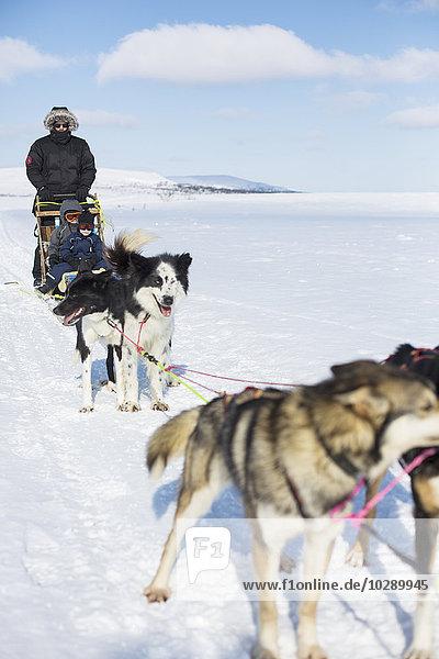 Sweden  Harjedalen  Vemdalen  Father with children (2-3) (4-5) on sledge