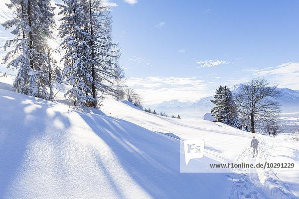Frau macht eine Skitour  Gaisberg  Salzburger Land  Österreich  Europa