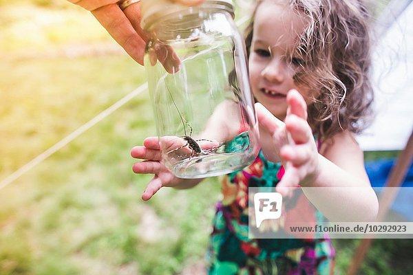 Großvaters Hand hält Insekt im Glas für Enkelin