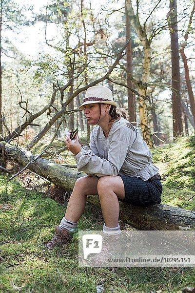 Reife Wanderin sitzt auf Baumstamm und isst Sandwich im Wald