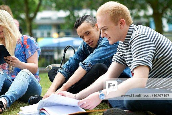Männliche Studenten  die auf dem College-Campus arbeiten.
