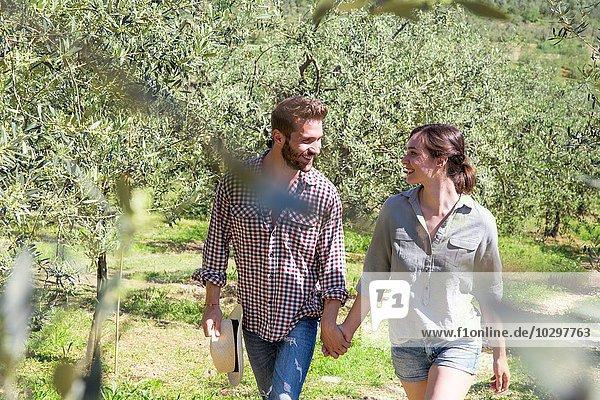 Blick durch das Laub eines Paares  das Hand in Hand geht  von Angesicht zu Angesicht lächelnd. Blick durch das Laub eines Paares, das Hand in Hand geht, von Angesicht zu Angesicht lächelnd.