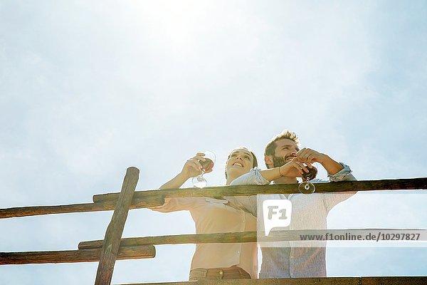 Niedriger Blickwinkel auf ein junges Paar mit Weingläsern Niedriger Blickwinkel auf ein junges Paar mit Weingläsern
