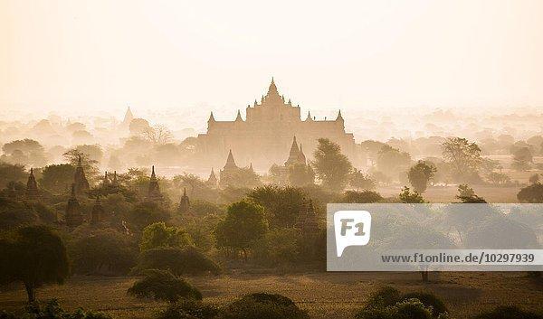 Morgennebel in der alten Stadt von Bagan  Mandalay-Division  Myanmar  Asien