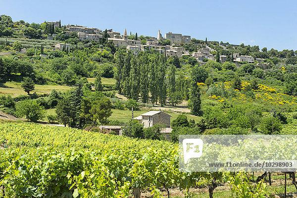 Ausblick auf das Dorf Le Crestet  Vaucluse  Provence Alpes Cote d'Azur  Frankreich  Europa