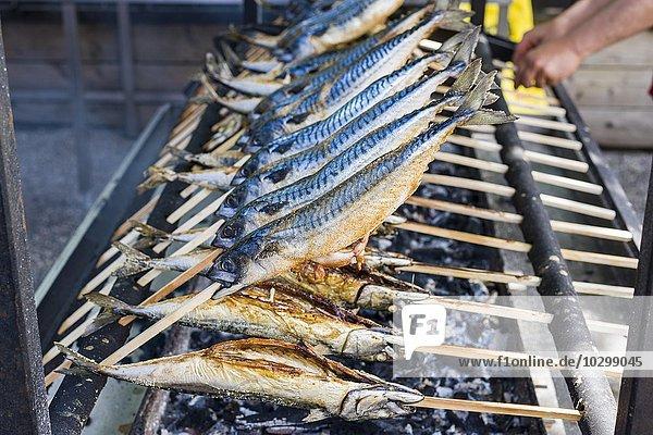 Steckerlfisch  Fischgericht auf Holzstab  auf Grill  Grainau  Bayern  Deutschland  Europa