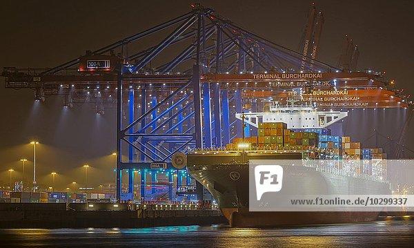 Container-Schiff im Hafen  Containerterminal  Hamburg  Deutschland  Europa