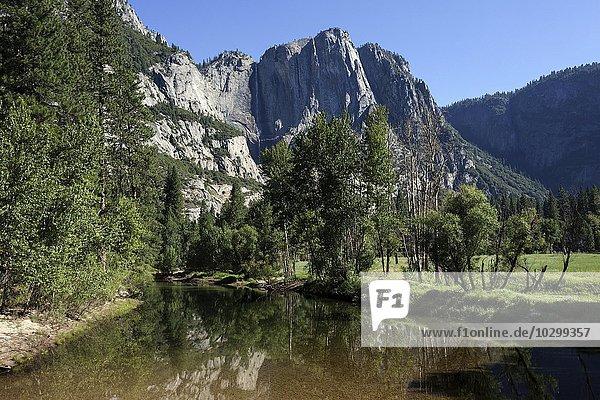 Merced River  hinten Yosemite Point und Upper Yosemite Fall  Yosemite Valley  Yosemite Nationalpark  Kalifornien  USA  Nordamerika