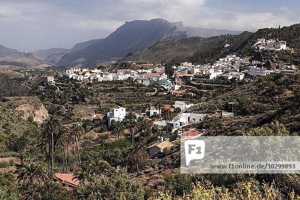Ausblick auf San Bartolome de Tirajana  Gran Canaria  Kanarische Inseln  Spanien  Europa
