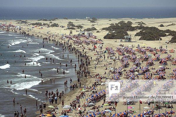 Crowded beach with umbrellas  Playa del Ingeles  Gran Canaria  Canary Islands  Spain  Europe