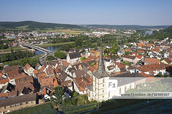 Altstadt mit Pfarrkirche St. Pankratius und Main  Klingenberg am Main  Spessart  Mainviereck  Unterfranken  Franken  Bayern  Deutschland  Europa