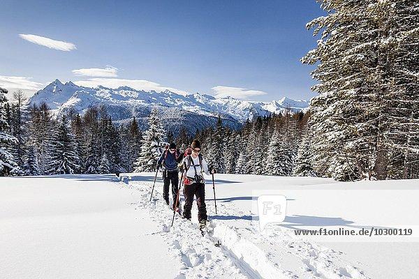 Skitourengeher beim Aufstieg auf die Cima Bocche am Passo Valles  hinten der Colbricon  Parco naturale Paneveggio  Pale di San Marino  Dolomiten  Trentino  Italien  Europa