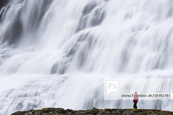 Dynjandi Foss waterfall  with tourist  Westfjords  Iceland  Europe