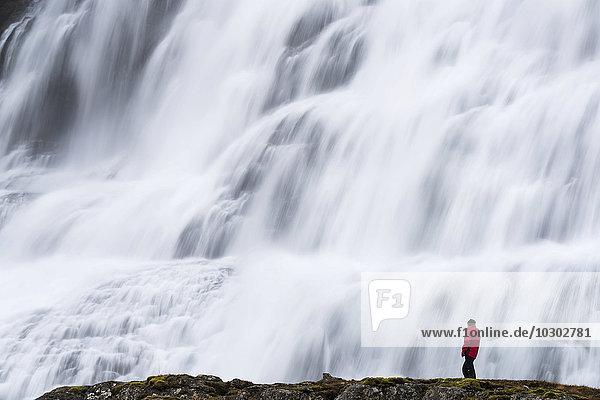 Dynjandi Foss Wasserfall mit Tourist  Westfjorde  Island  Europa