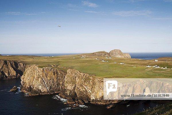 Landschaft und Gebäude auf Fair Isle  Shetlandinseln  Schottland  Großbritannien  Europa