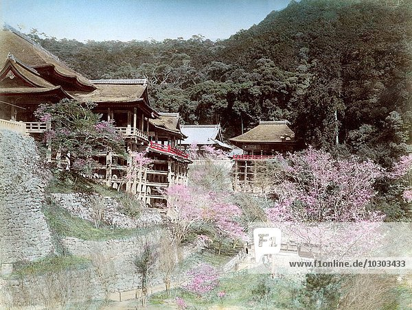 Kiyomizu Tempel  Kyoto  Japan  Asien