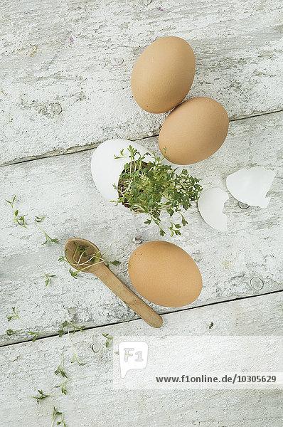Kresse und Eier