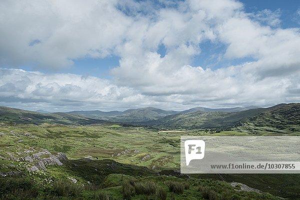 Irland  Grafschaft Kerry  Glengarriff  Blick ins Tal