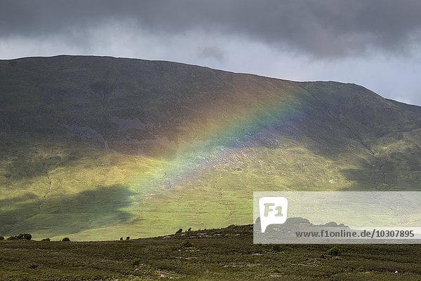 Irland  Grafschaft Galway  Connemara Nationalpark  Regenbogen