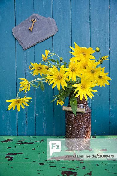 Emaildose mit Sonnenblumenblüten vor der Holzwand