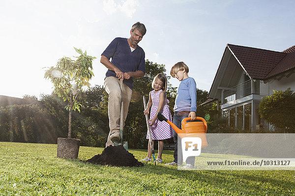 Vater und Kinder pflanzen Baum im Garten