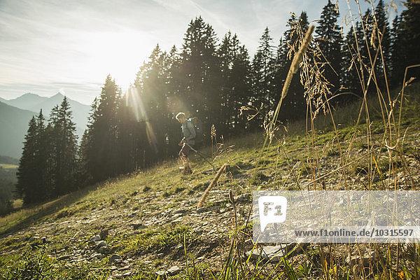 Österreich  Tirol  Tannheimer Tal  junger Mann beim Wandern im Sonnenlicht auf der Alm